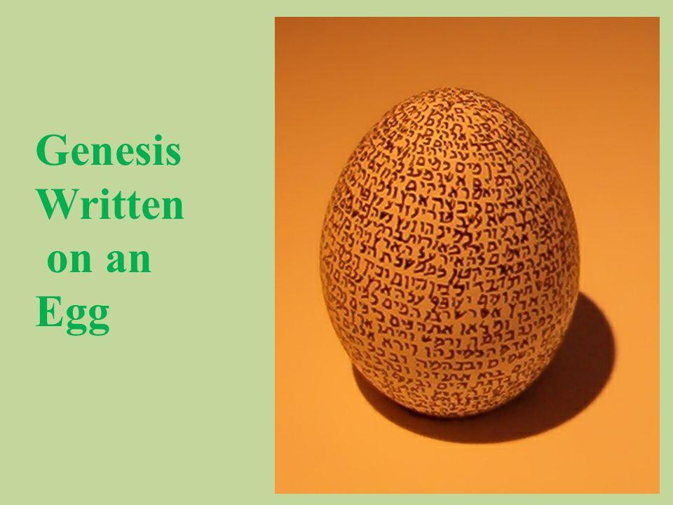 Genesis Written on an Egg