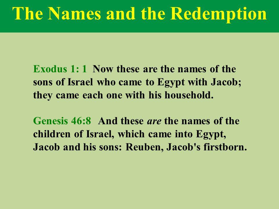 Joseph Prepares for Redemption Exodus 1:5 But Joseph was already in Egypt.