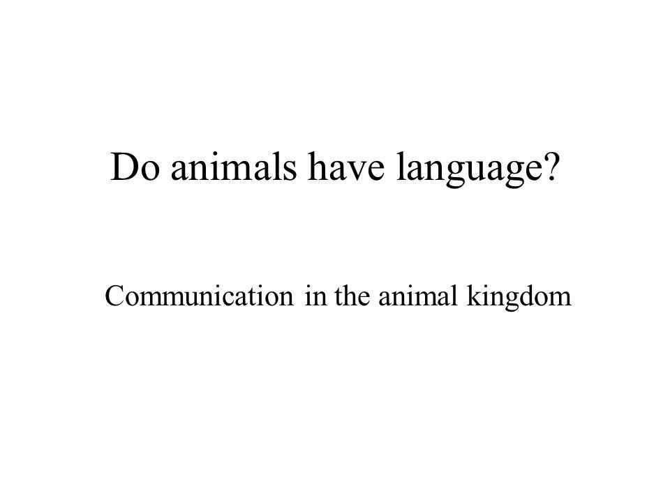 Do animals have language Communication in the animal kingdom