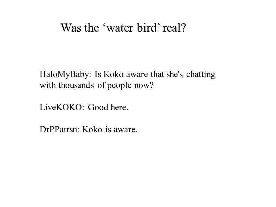 HaloMyBaby: Is Koko aware that she s chatting with thousands of people now.