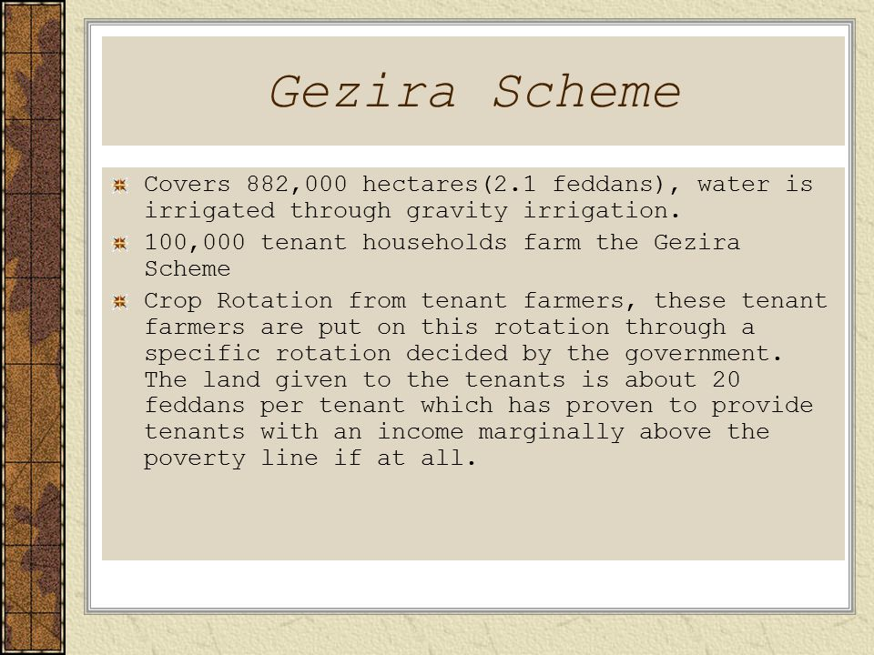 Gezira Scheme Covers 882,000 hectares(2.1 feddans), water is irrigated through gravity irrigation.