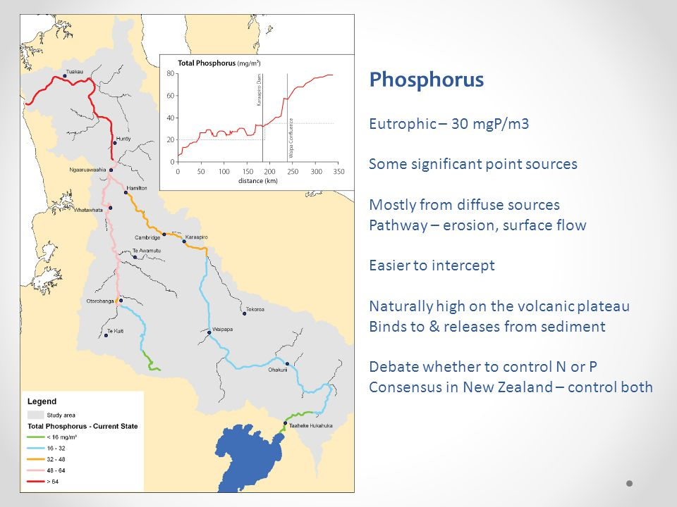 Phosphorus Eutrophic – 30 mgP/m3 Some significant point sources Mostly from diffuse sources Pathway – erosion, surface flow Easier to intercept Naturally high on the volcanic plateau Binds to & releases from sediment Debate whether to control N or P Consensus in New Zealand – control both