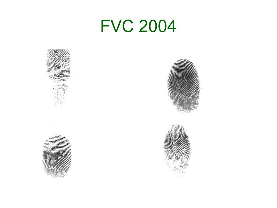FVC 2004