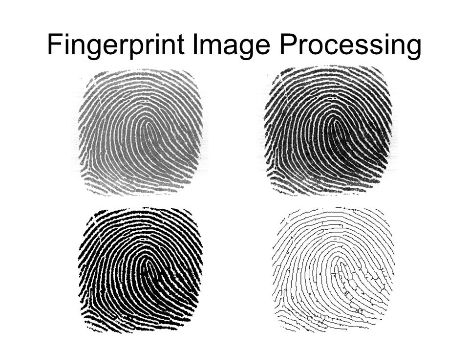 Fingerprint Image Processing