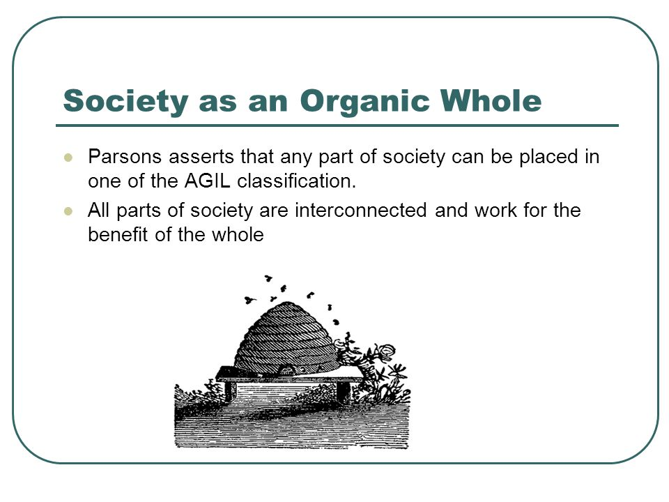 Society as an Organic Whole Parsons asserts that any part of society can be placed in one of the AGIL classification. All parts of society are interco