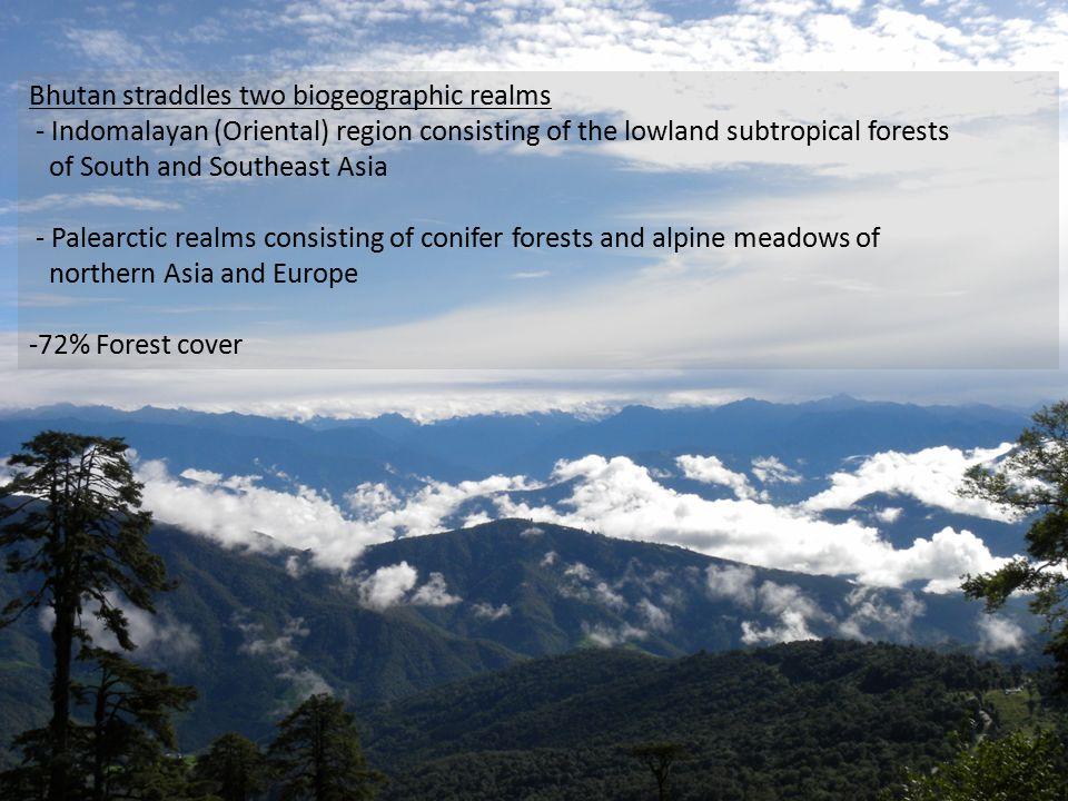 - 5,603 species of vascular plants - 369 species orchids & 46 Rhodos - Over 90 species of mushrooms (Matsutake)