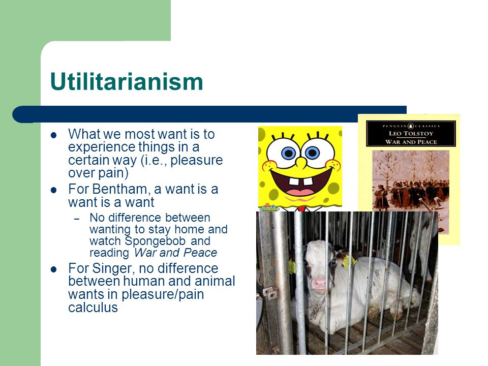 Utilitarianism What we most want is to experience things in a certain way (i.e., pleasure over pain) For Bentham, a want is a want is a want – No difference between wanting to stay home and watch Spongebob and reading War and Peace For Singer, no difference between human and animal wants in pleasure/pain calculus