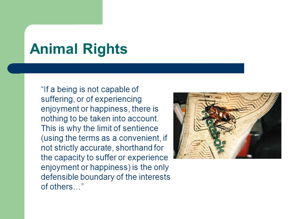 """Animal Rights """"If a being is not capable of suffering, or of experiencing enjoyment or happiness, there is nothing to be taken into account. This is w"""