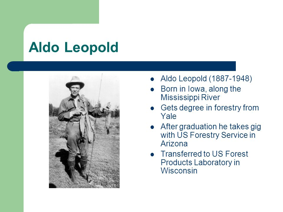 Aldo Leopold Aldo Leopold (1887-1948) Born in Iowa, along the Mississippi River Gets degree in forestry from Yale After graduation he takes gig with US Forestry Service in Arizona Transferred to US Forest Products Laboratory in Wisconsin