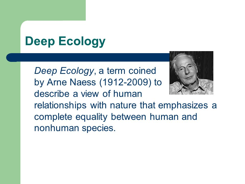 Deep Ecology Deep Ecology, a term coined by Arne Naess (1912-2009) to describe a view of human relationships with nature that emphasizes a complete eq