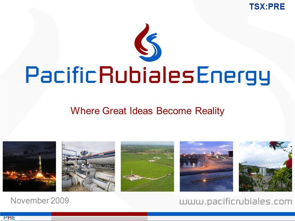 TSX:PRE November 2009 Where Great Ideas Become Reality