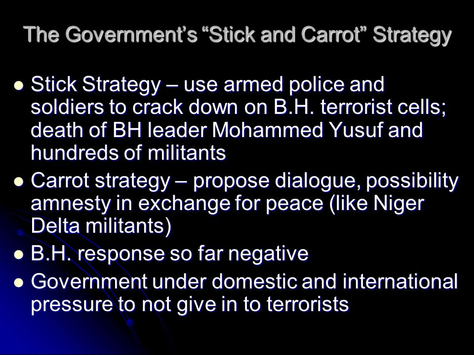 The Government's Stick and Carrot Strategy Stick Strategy – use armed police and soldiers to crack down on B.H.