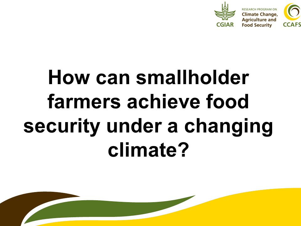 How can smallholder farmers achieve food security under a changing climate?