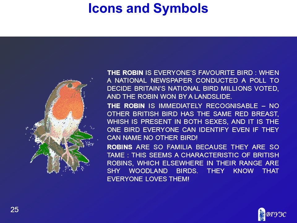 25 Icons and Symbols THE ROBIN IS EVERYONE'S FAVOURITE BIRD : WHEN A NATIONAL NEWSPAPER CONDUCTED A POLL TO DECIDE BRITAIN'S NATIONAL BIRD MILLIONS VOTED, AND THE ROBIN WON BY A LANDSLIDE.