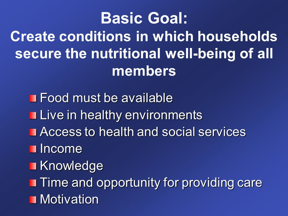 Basic Goal: Create conditions in which households secure the nutritional well-being of all members Food must be available Live in healthy environments Access to health and social services IncomeKnowledge Time and opportunity for providing care Motivation
