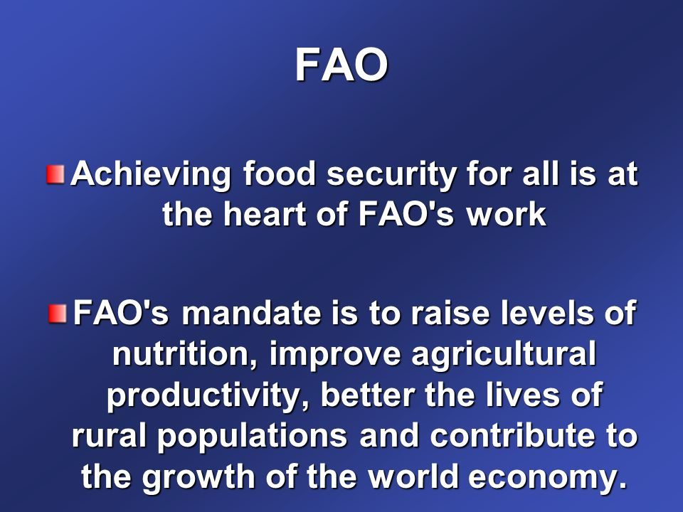 FAO Achieving food security for all is at the heart of FAO s work FAO s mandate is to raise levels of nutrition, improve agricultural productivity, better the lives of rural populations and contribute to the growth of the world economy.