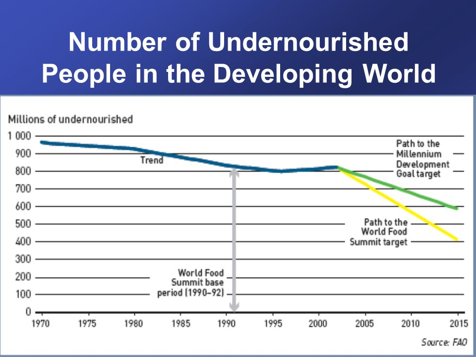 Number of Undernourished People in the Developing World
