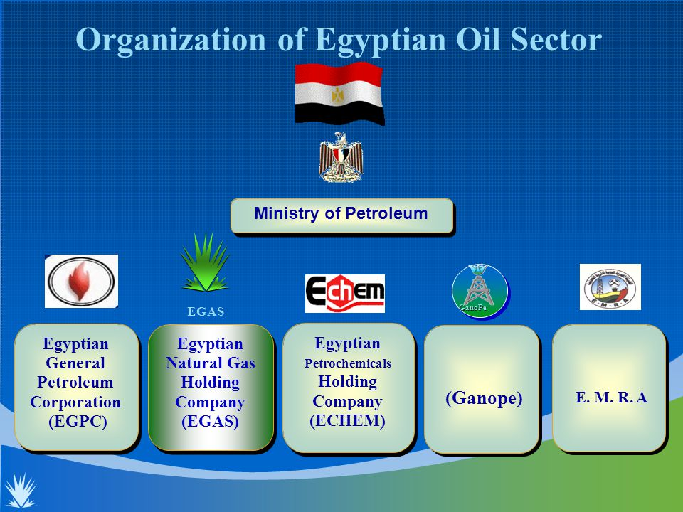Organization of Egyptian Oil Sector Ministry of Petroleum Egyptian General Petroleum Corporation (EGPC) Egyptian General Petroleum Corporation (EGPC) (Ganope) GanoPe Egyptian Petrochemicals Holding Company (ECHEM) Egyptian Petrochemicals Holding Company (ECHEM) Egyptian Natural Gas Holding Company (EGAS) Egyptian Natural Gas Holding Company (EGAS) EGAS E.