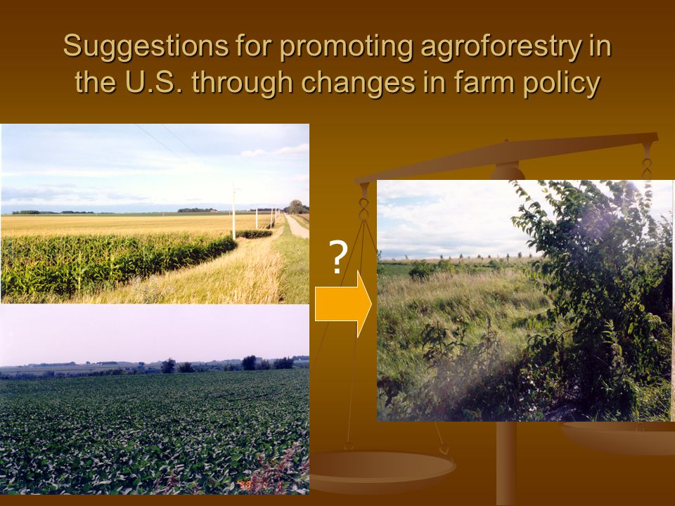 Suggestions for promoting agroforestry in the U.S. through changes in farm policy