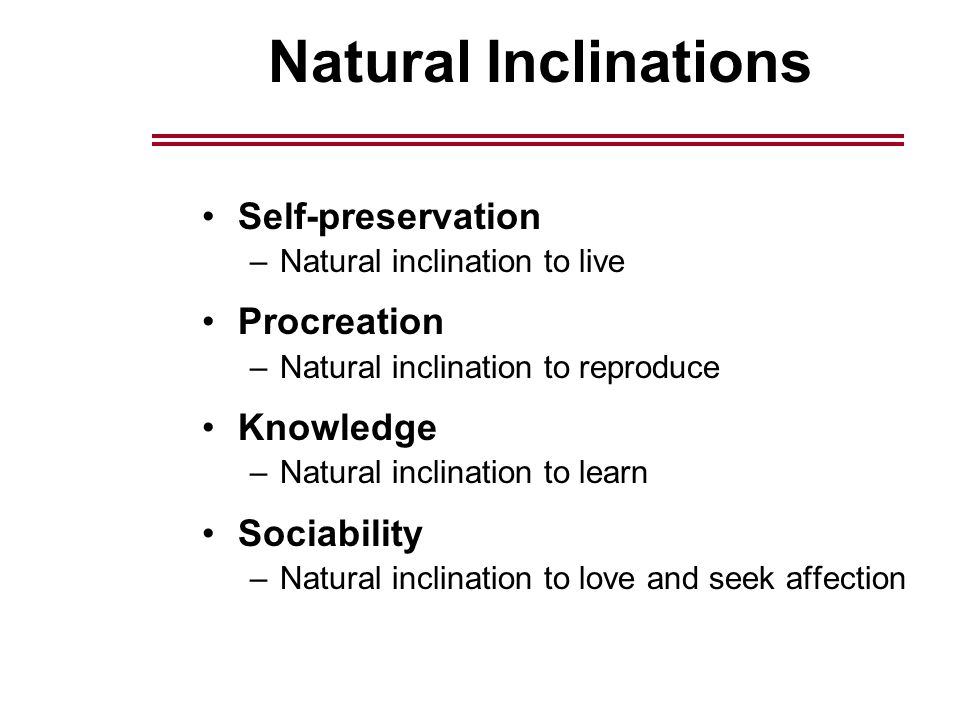 Natural Inclinations Self-preservation –Natural inclination to live Procreation –Natural inclination to reproduce Knowledge –Natural inclination to learn Sociability –Natural inclination to love and seek affection