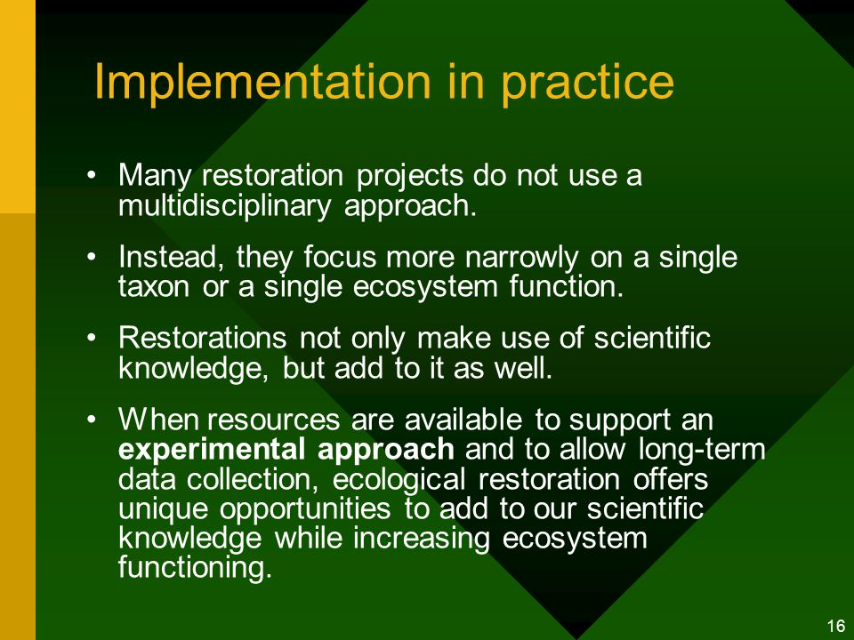 16 Implementation in practice Many restoration projects do not use a multidisciplinary approach.