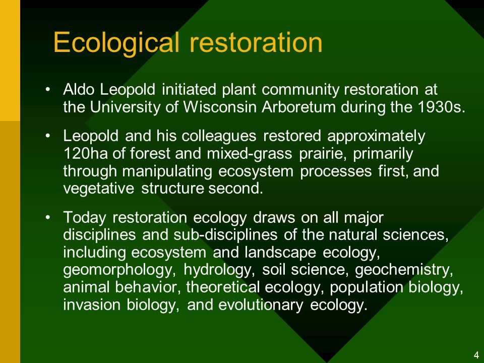 4 Ecological restoration Aldo Leopold initiated plant community restoration at the University of Wisconsin Arboretum during the 1930s.