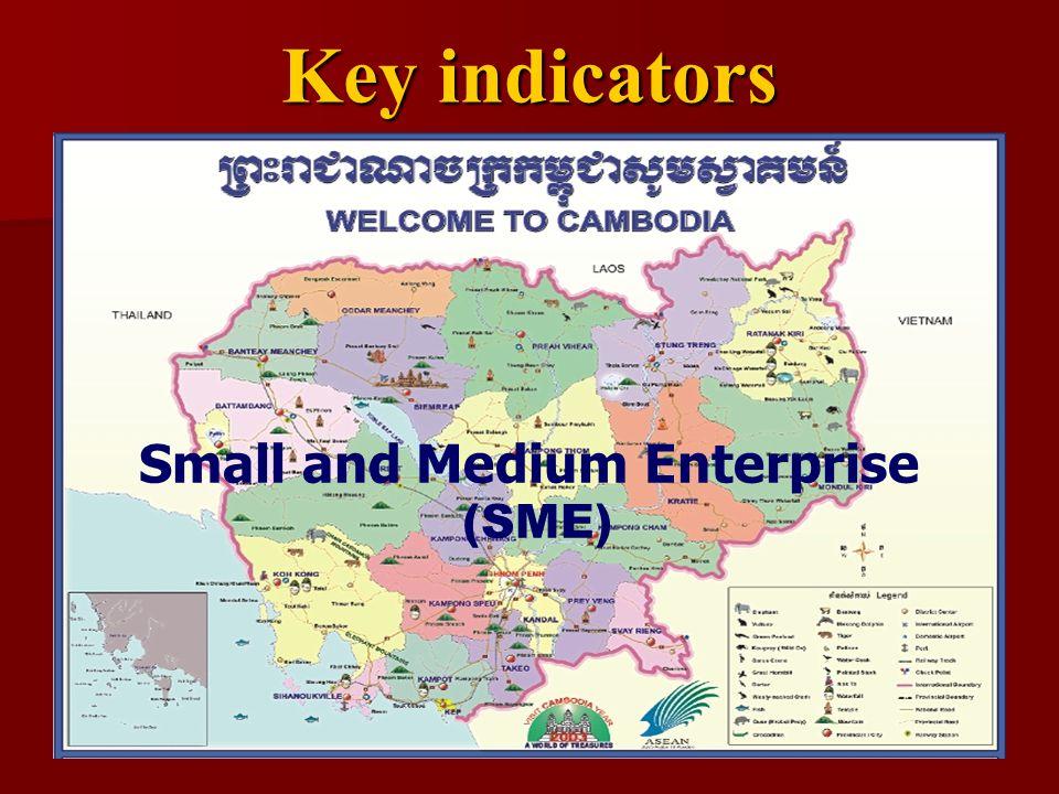 Key indicators Small and Medium Enterprise (SME)