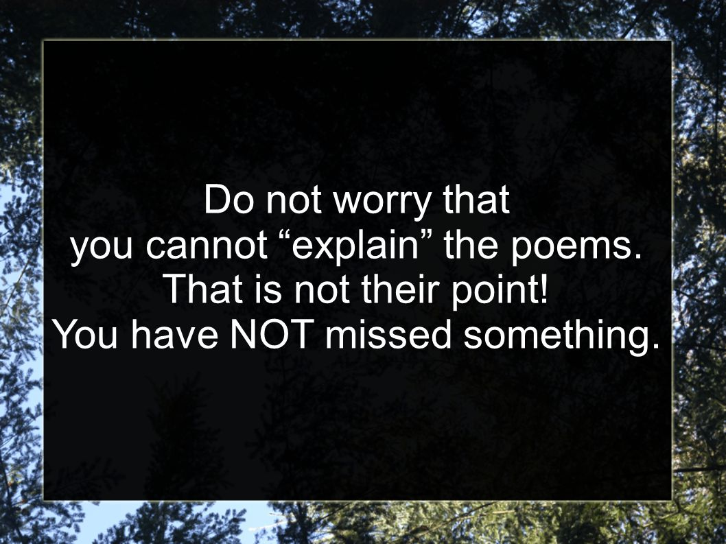 Do not worry that you cannot explain the poems. That is not their point.