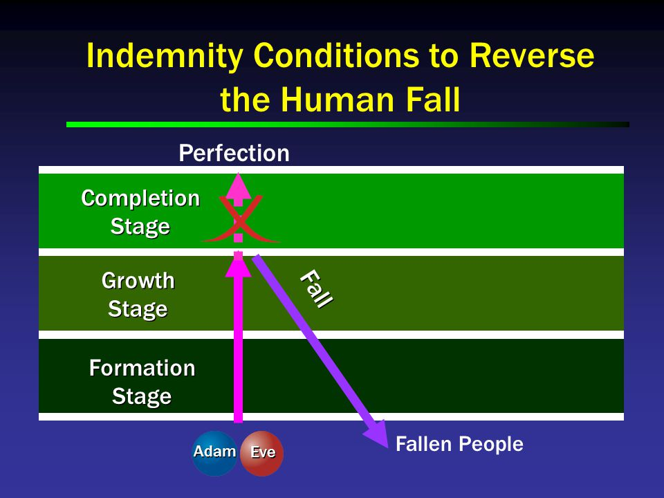 Indemnity Conditions to Reverse the Human Fall Perfection Completion Stage Completion Stage Growth Stage Growth Stage Formation Stage Formation Stage Fall Fallen People Adam Eve