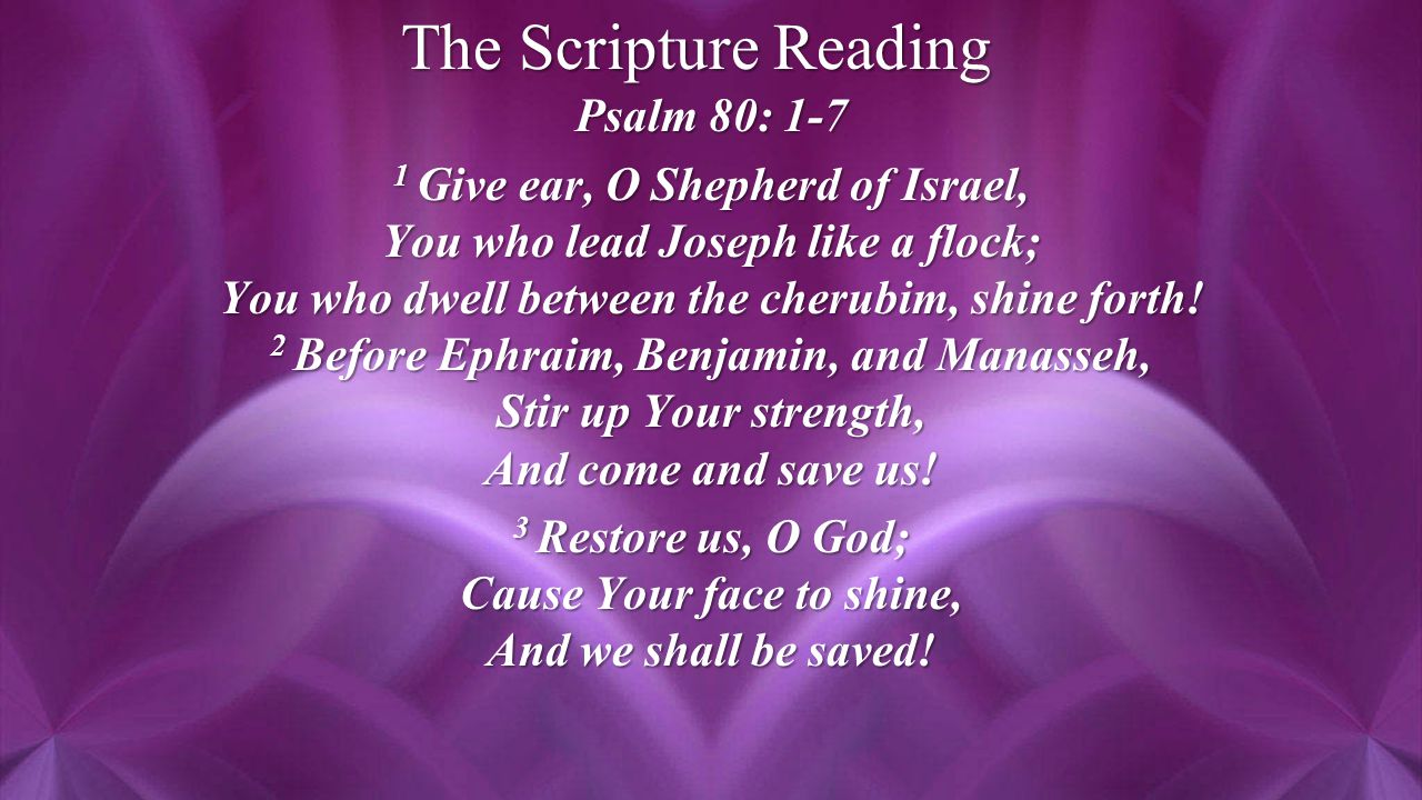 The Scripture Reading Psalm 80: 1-7 1 Give ear, O Shepherd of Israel, You who lead Joseph like a flock; You who dwell between the cherubim, shine forth.