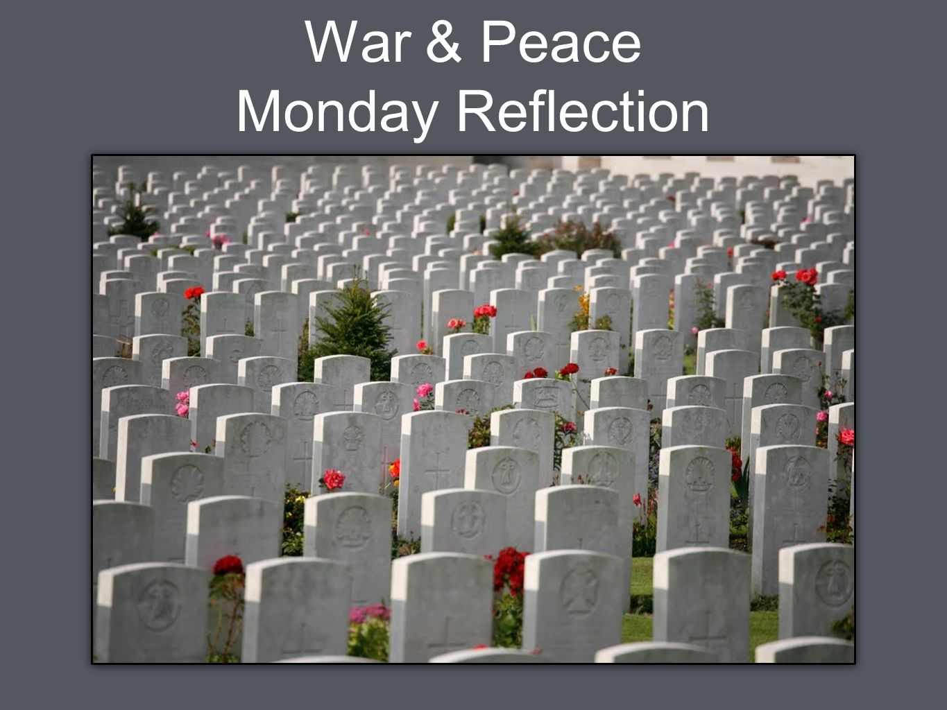 War & Peace Monday Reflection
