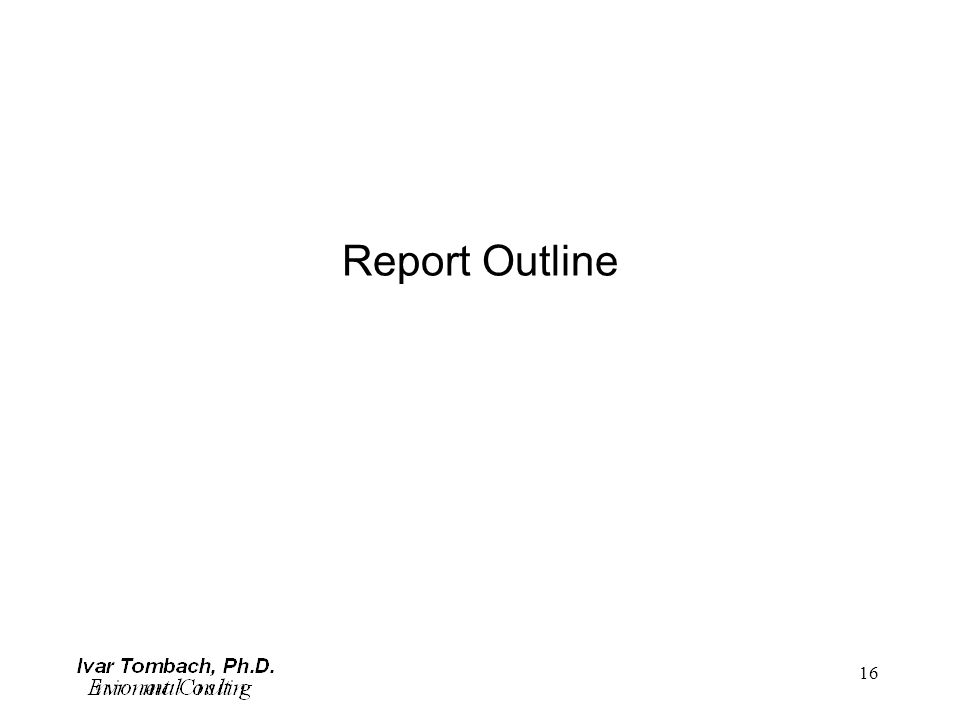 16 Report Outline
