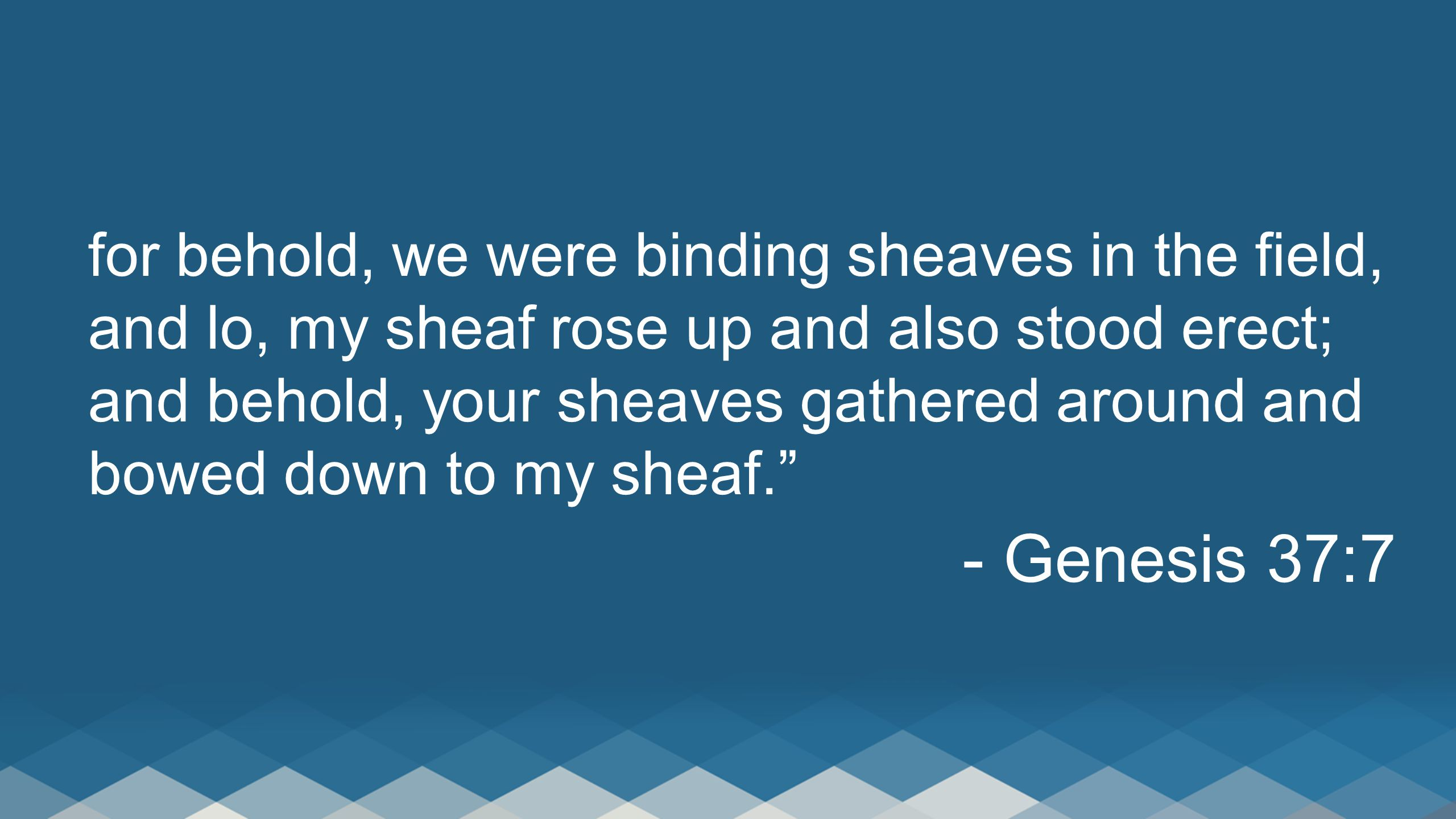 for behold, we were binding sheaves in the field, and lo, my sheaf rose up and also stood erect; and behold, your sheaves gathered around and bowed down to my sheaf. - Genesis 37:7
