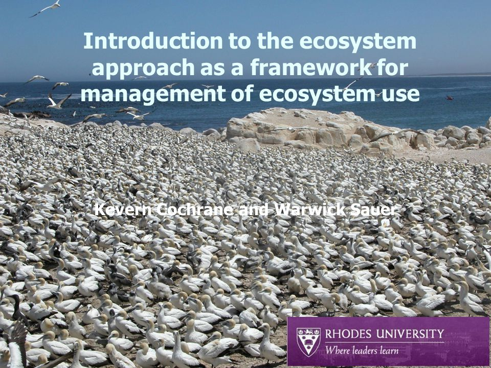 Introduction to the ecosystem approach as a framework for management of ecosystem use Kevern Cochrane and Warwick Sauer