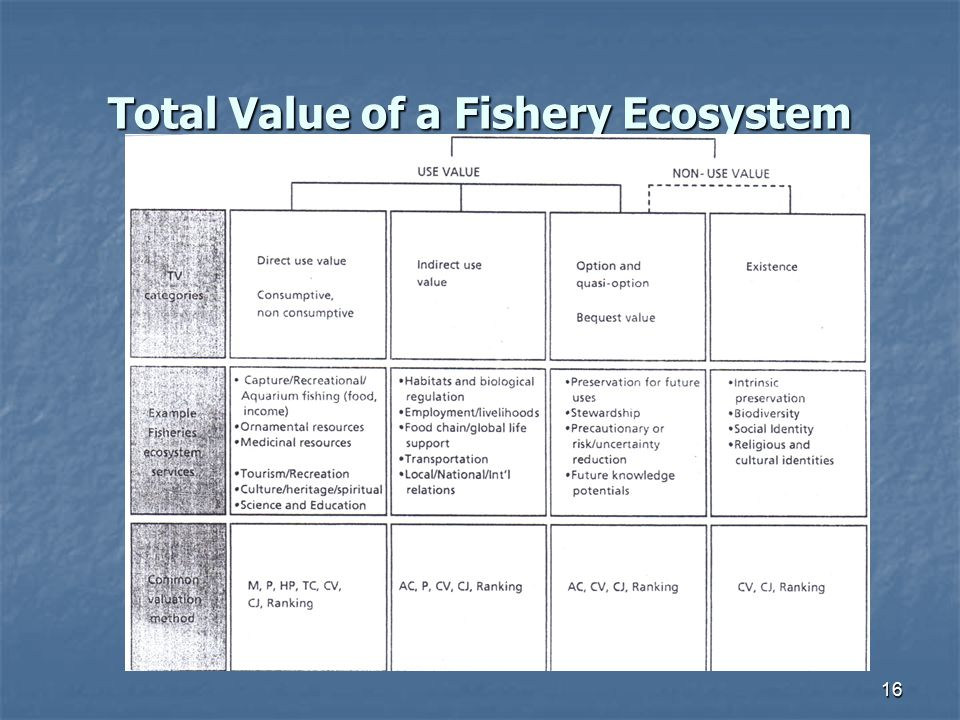 Total Value of a Fishery Ecosystem 16