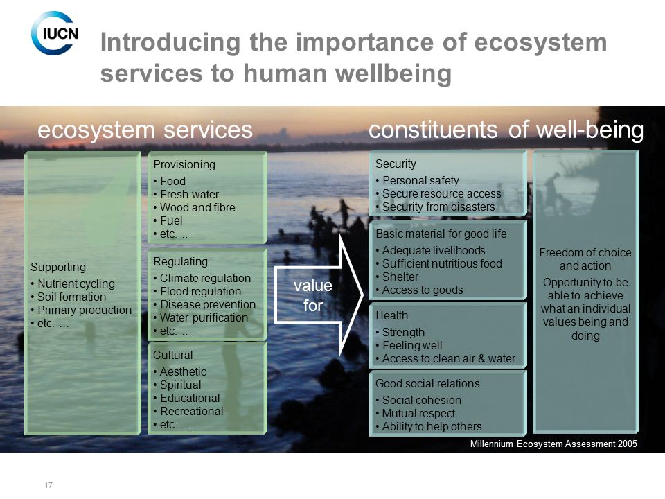 17 Introducing the importance of ecosystem services to human wellbeing value for constituents of well-being Security Personal safety Secure resource a