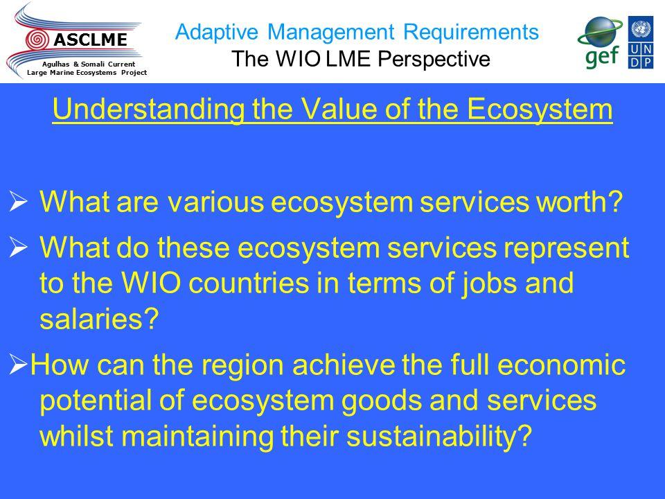 ASCLME Agulhas & Somali Current Large Marine Ecosystems Project Adaptive Management Requirements The WIO LME Perspective Understanding the Value of th