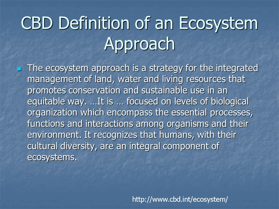 FAO Definition of EAF An Ecosystem Approach to Fisheries strives to balance diverse societal objectives, by taking account of the knowledge and uncertainties about biotic, abiotic and human components of ecosystems and their interactions and applying an integrated approach to fisheries within ecologically meaningful boundaries.