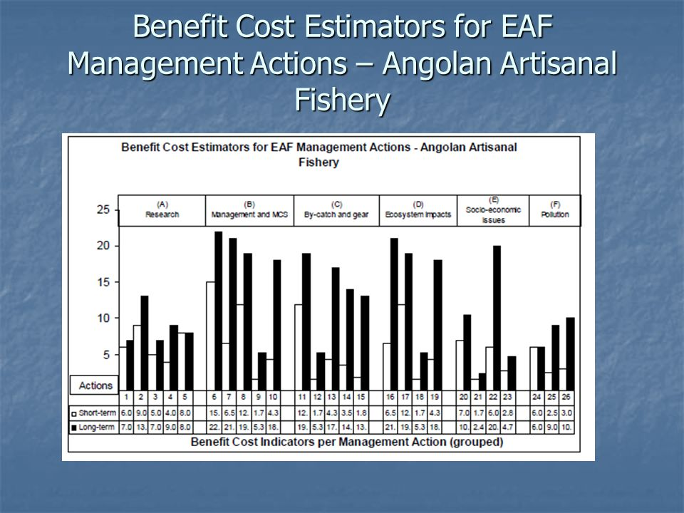 Benefit Cost Estimators for EAF Management Actions – Angolan Artisanal Fishery
