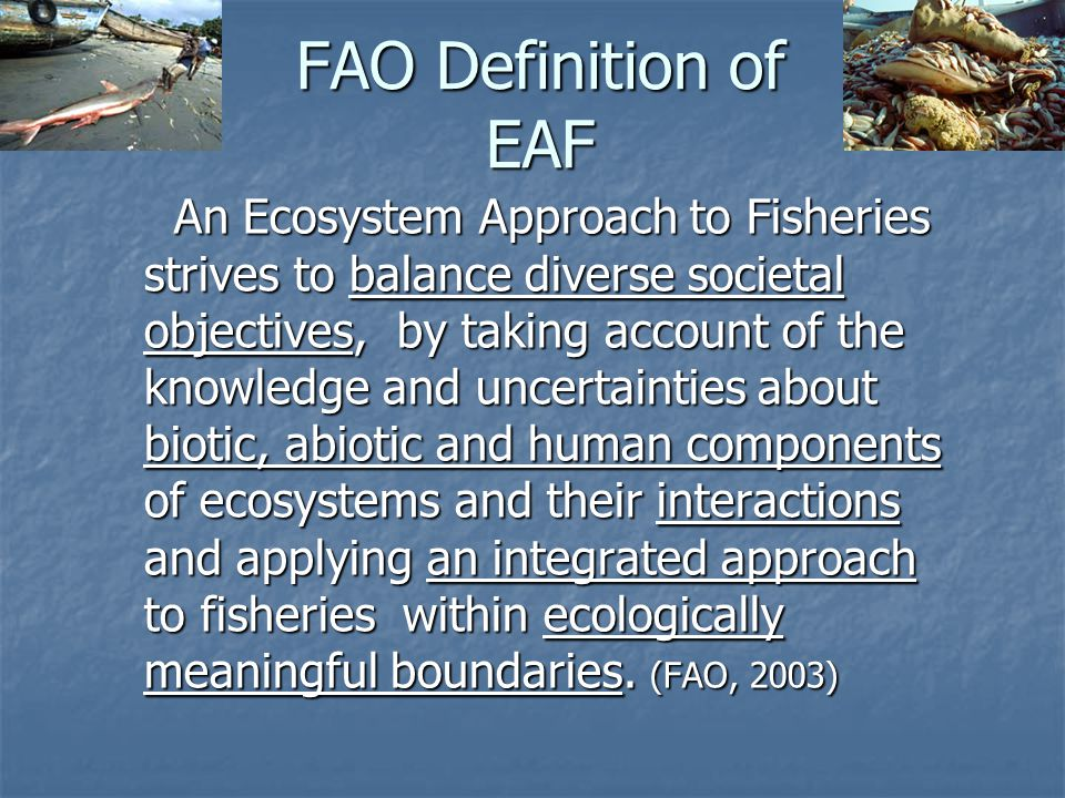 FAO Definition of EAF An Ecosystem Approach to Fisheries strives to balance diverse societal objectives, by taking account of the knowledge and uncert
