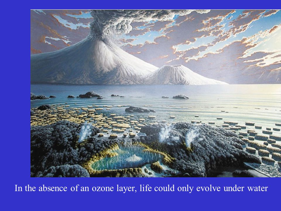 Ozone and LIfe In the absence of an ozone layer, life could only evolve under water