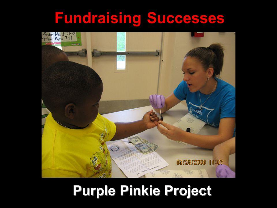 Fundraising Successes Purple Pinkie Project