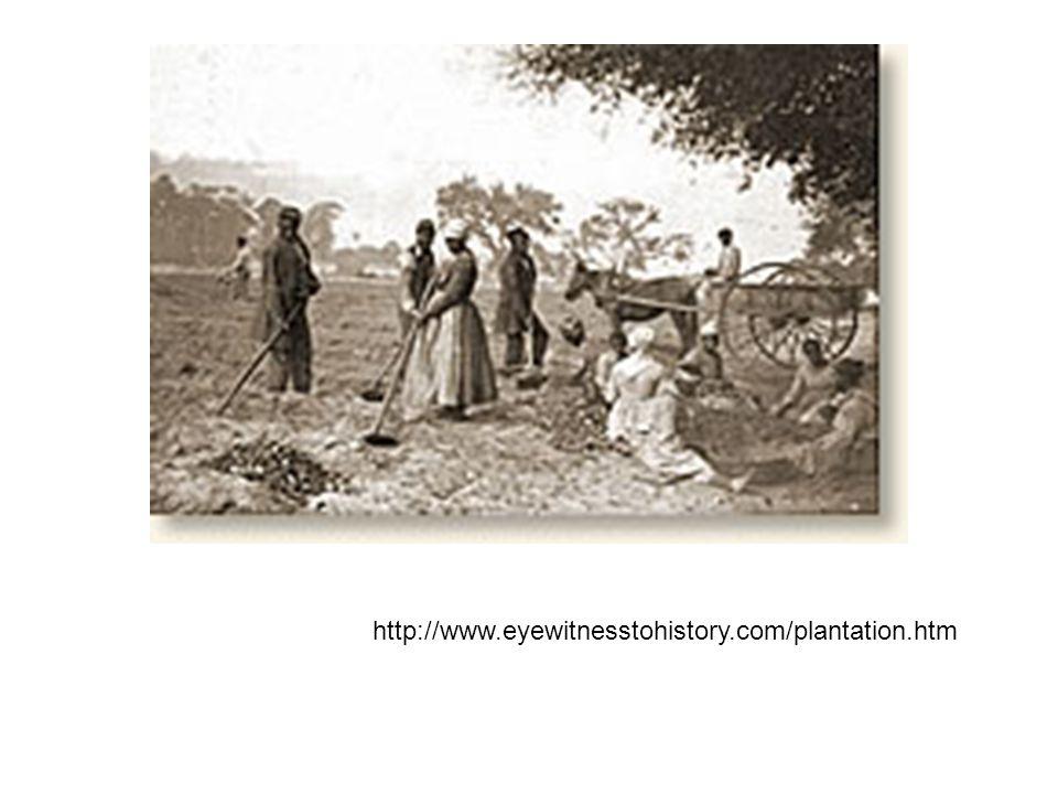 http://www.eyewitnesstohistory.com/plantation.htm