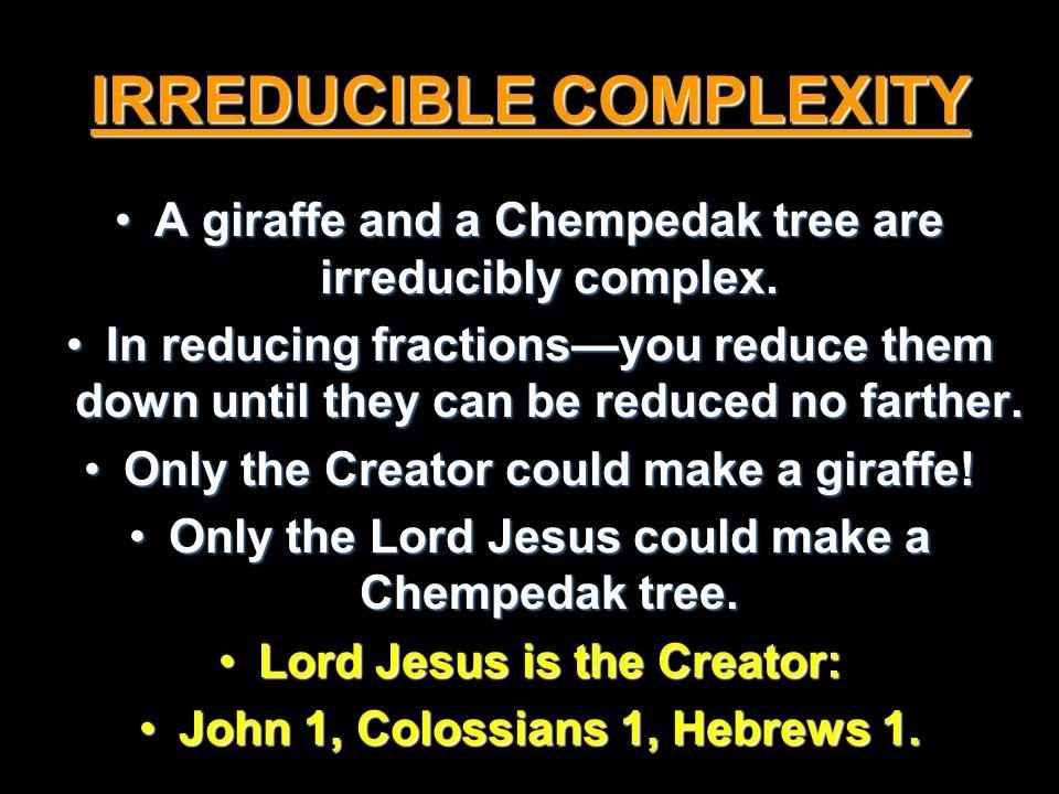 IRREDUCIBLE COMPLEXITY A giraffe and a Chempedak tree are irreducibly complex.A giraffe and a Chempedak tree are irreducibly complex.