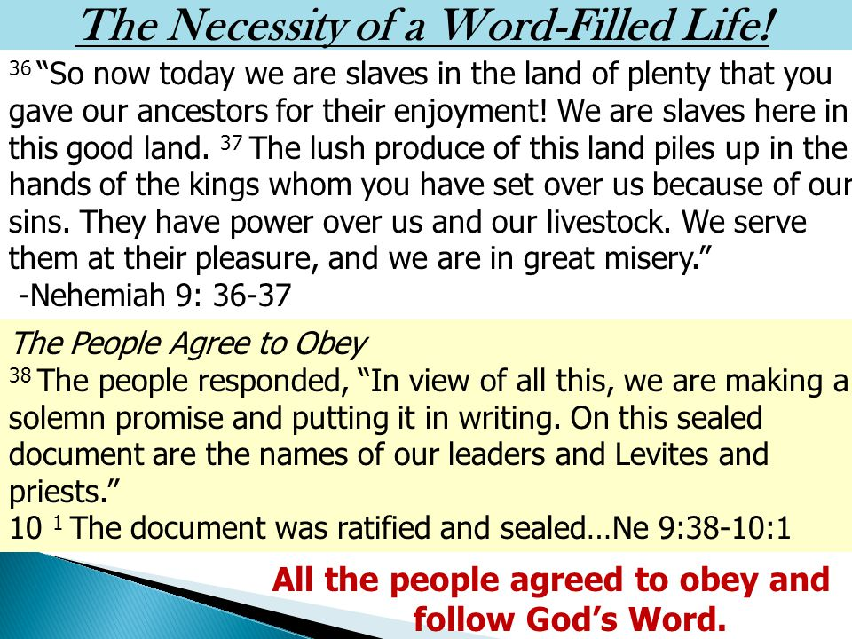 Where Is Our Allegiance, Our Obedience.