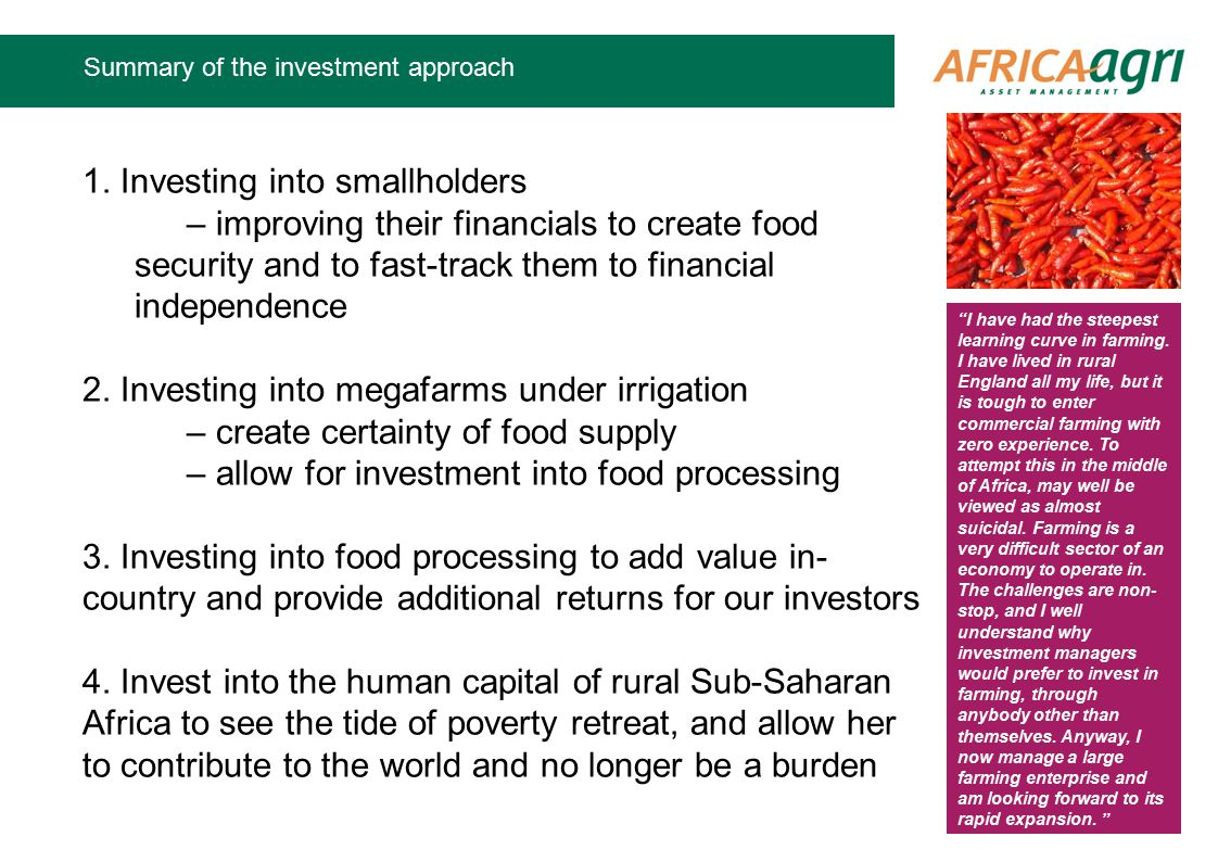 Summary of the investment approach 1.