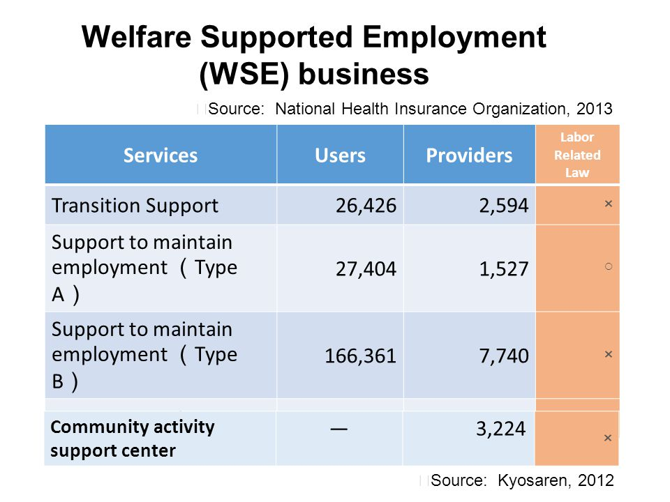 Welfare Supported Employment (WSE) business ServicesUsersProviders Labor Related Law Transition Support26,4262,594 × Support to maintain employment (