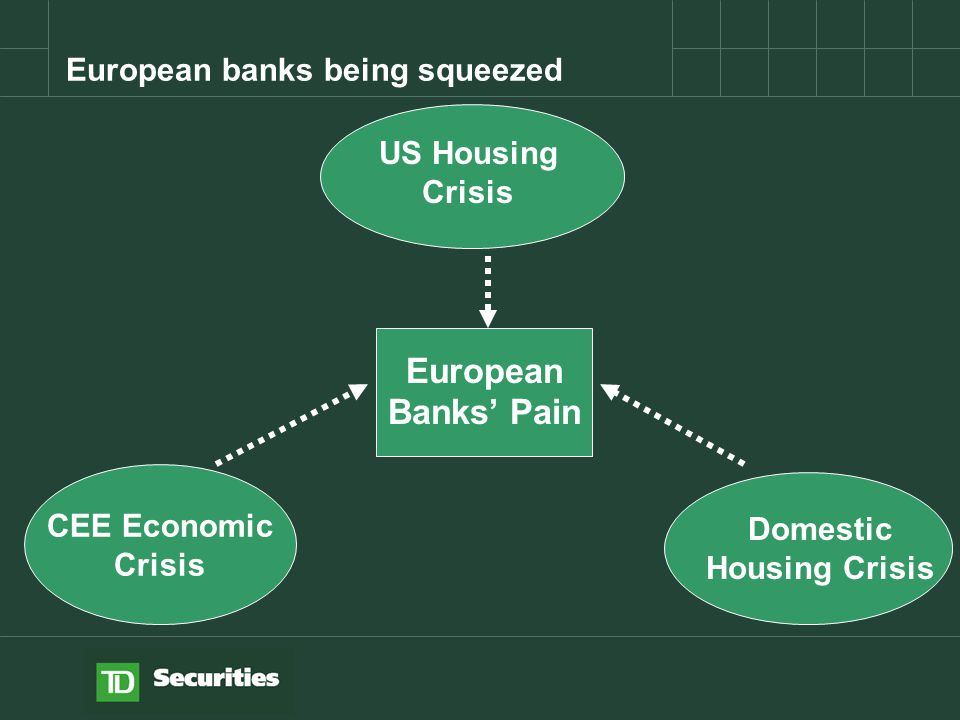 CEE Economic Crisis US Housing Crisis Domestic Housing Crisis European Banks' Pain European banks being squeezed