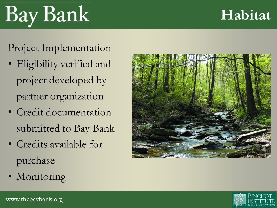 www.thebaybank.org Project Implementation Eligibility verified and project developed by partner organization Credit documentation submitted to Bay Bank Credits available for purchase Monitoring Habitat