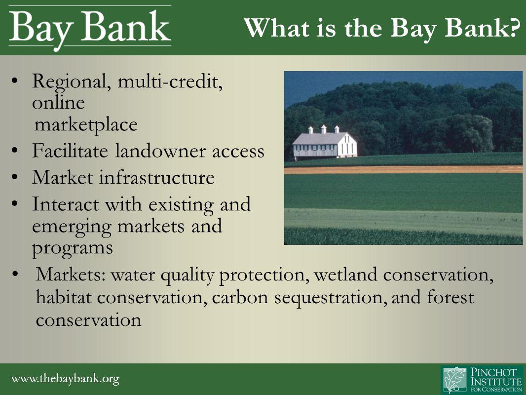 www.thebaybank.org Bay Bank Habitat Conservation Markets